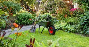 Schubkarre steht in Garten. Pflanzen und viel Grün