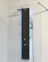 HSK Duschpaneel Lavida Plus, B: 250, H: 2158, T: 86 mm, Korpus: Edelstahl, Front: Glas schwarz