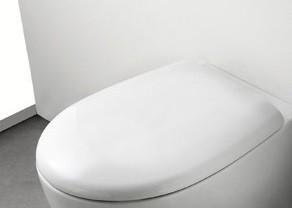 Bowl+ WC-Sitz mit Deckel, mit Absenkautomatik, weiss BP022BI