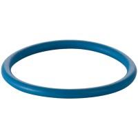 Geberit O-Ring für Duscharm zu AquaClean 8000 / 8000plus