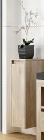 Neuesbad Premium Serie 3 Hängehalbhochschrank, 1 Tür